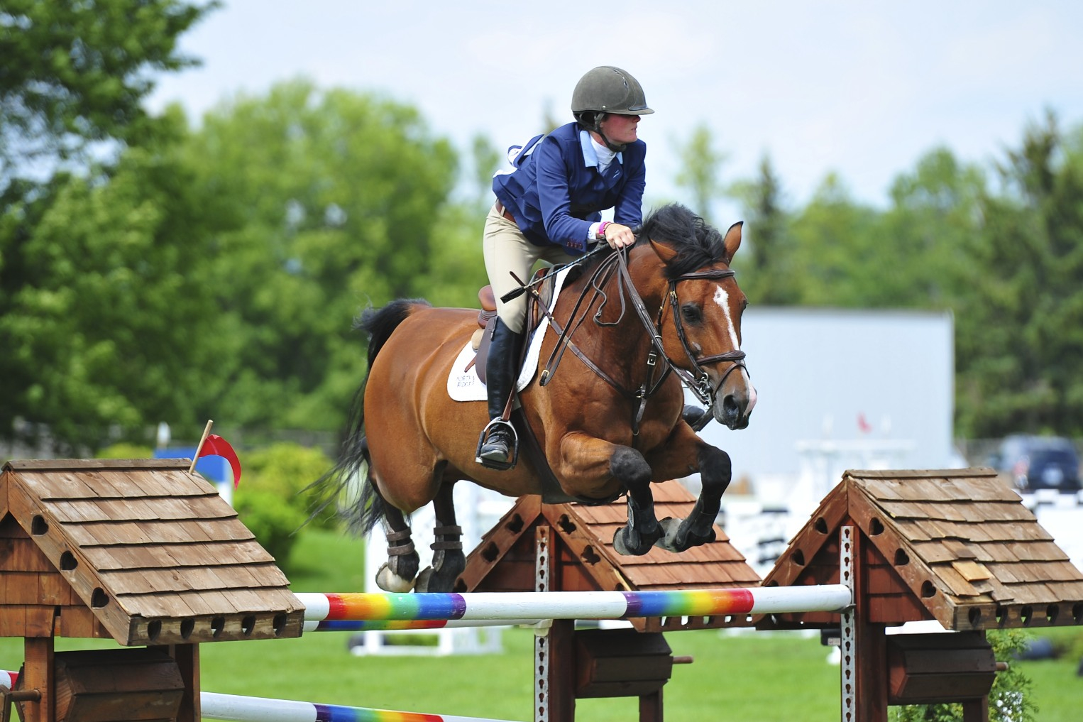 Sarah Johnstone Defends Her Title At National Capital Show